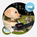 MyKi Pet GPS Tracker - персонален GPS/GSM тракер за Вашия домашен любимец (черен)