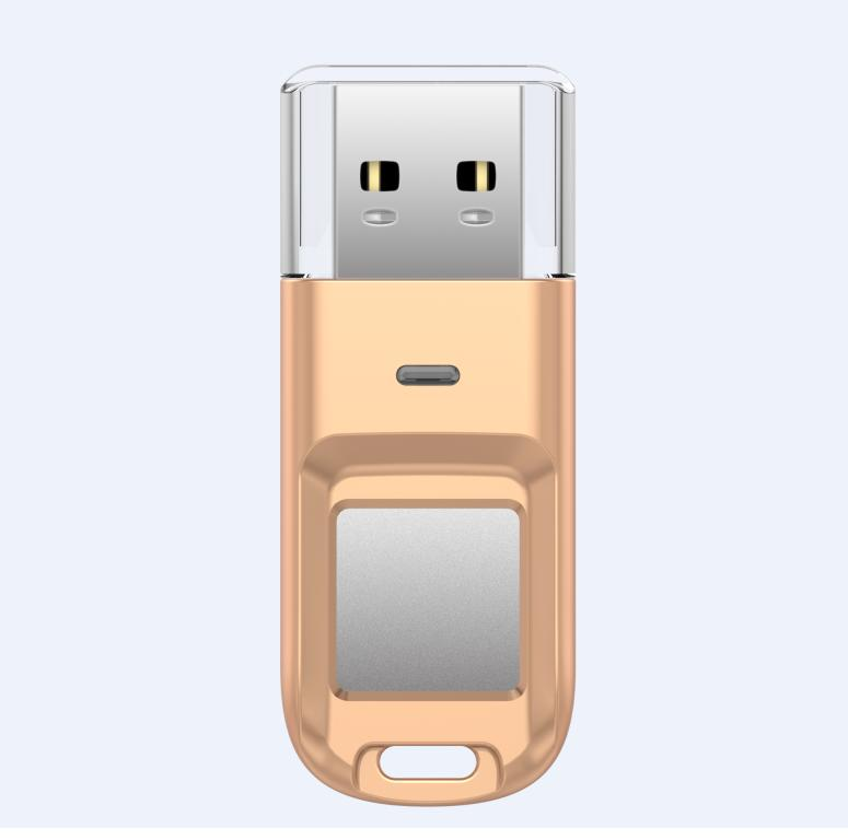Devia Magic Fingerprint Encryption USB Flash Drive 32GB - USB флаш памет с пръстов отпечатък 32GB (златист)
