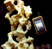 Krusell SEaLABox 3XL - универсален водоустойчив калъф за iPhone 8, iPhone 7, iPhone 6S, Samsung Galaxy S3, S3 Neo, S4, HTC One, Z10, Nokia Lumia, LG G2 и др. (черен) 1