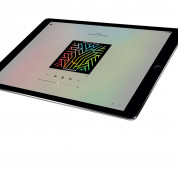 Apple iPad Pro Wi-Fi, 32GB, 12.9 инча, Touch ID (тъмносив) 6