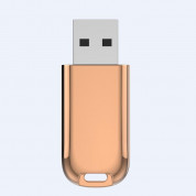 Devia Magic Fingerprint Encryption USB Flash Drive 32GB - USB флаш памет с пръстов отпечатък 32GB (златист) 2